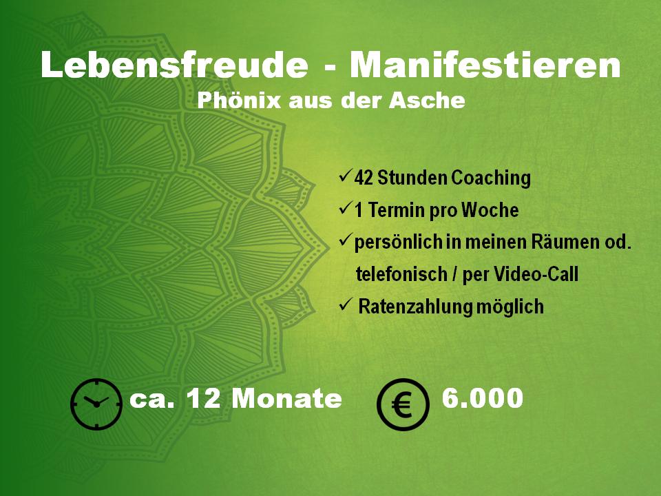 Coaching, Lebensberatung, Begleitung für die Dauer eines Jahres. 42 Coachingstunden, turnus wöchentlich, Ratenzahlung möglich, Paketpreis 6000€